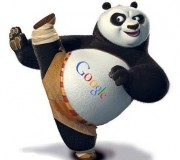 latest google panda update