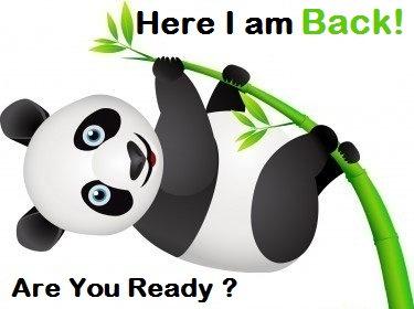 panda 2013